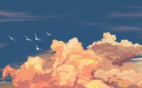 Picture the sky, clouds, birds