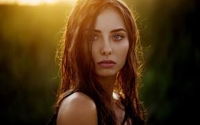 Wallpaper girl, long hair, photo, sunset, photographer, blue eyes, model, lips, face, brunette, Natasha, portrait, profile, ...