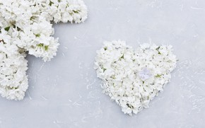 Picture floral, heart, romantic, white, lilac, wood, love, heart, flowers, flowers, spring, white, lilac