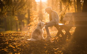 Picture autumn, rays, light, bench, Park, mood, foliage, dog, shop, girl, friends