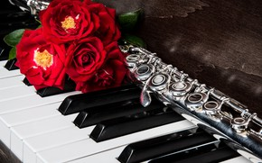 Picture roses, piano, flute