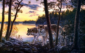 Picture forest, sunset, branches, shore, figure, pack, picture, art, wolves, painting, pond, Darrell Bush