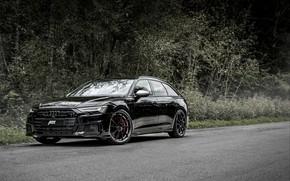 Picture Audi, TDI, ABBOT, universal, Before, 2019, Audi S6