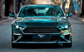 Picture Mustang, Ford, front view, Bullitt, 2019