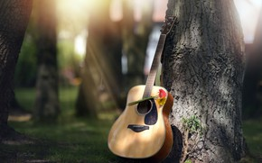 Picture flowers, tree, guitar