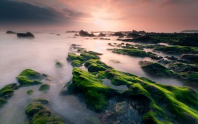 Picture sea, the sky, clouds, light, algae, sunset, stones, dawn, shore, green, haze, Spain, rocky, mossy