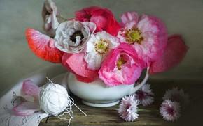 Picture drops, tangle, Maki, bouquet, thread, cornflowers