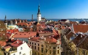 Picture building, home, roof, Estonia, Tallinn, panorama