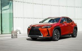 Picture Lexus, crossover, Lexus UX, 2019, 250h