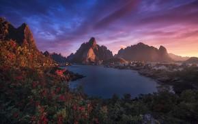 Picture sea, landscape, sunset, mountains, vegetation, village, Norway, The Lofoten Islands, The Rhine, Lofoten, Carlos F …