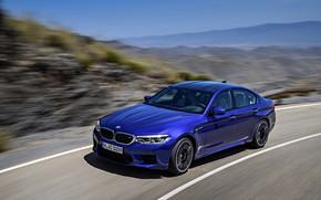 Picture road, movement, speed, BMW, sedan, BMW M5, 2017, M5, F90