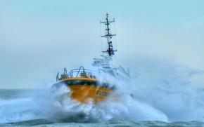 Picture wave, storm, element, ship, Netherlands
