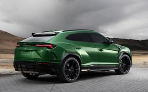 Picture Lamborghini, rear view, 2018, Ball Wed, Urus