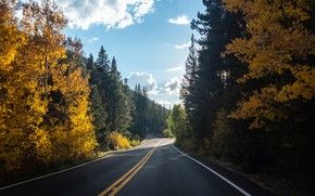 Picture forest, sky, trees, landscape, nature, clouds, Road, fall