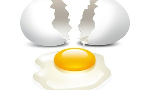 Picture egg, shell, the yolk, broken, protein