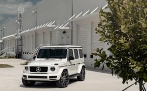 Picture Mercedes, Tree, AMG, White, G63, Vossen, Brick, W464