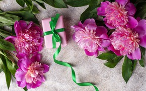 Picture flowers, gift, pink, pink, flowers, peonies, peonies, gift box