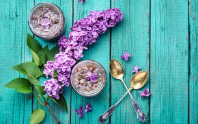 Picture wood, flowers, lilac, lilac