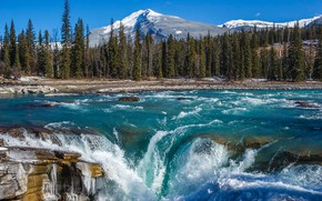 Picture forest, mountains, river, waterfall, Canada, Albert, Alberta, Canada, Jasper National Park, Rocky mountains, Jasper national …