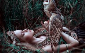 Picture grass, girl, decoration, owl, bird, by Maria Lipina, Olga Krushina