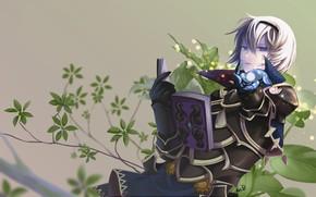 Picture magic, book, knight, Fire Emblem