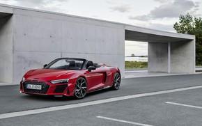Picture Audi, Audi R8, Spyder, V10, 2020, RWD