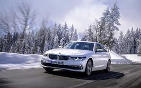 Picture white, snow, trees, BMW, sedan, hybrid, 5, four-door, 2017, 5-series, G30, 530e iPerformance