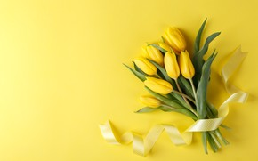 Picture flowers, bouquet, tape, yellow tulips
