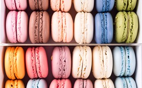 Picture background, colors, colorful, french, macaron, macaroon