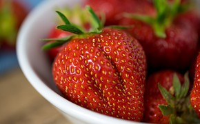 Picture summer, macro, berries, food, harvest, strawberry, red, bowl, composition, Victoria