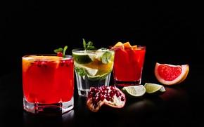 Picture cocktail, lime, glasses, citrus, drinks, mint, garnet, mojito, cocktails, Drink