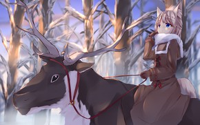 Picture winter, deer, girl
