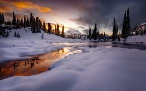 Picture winter, snow, river, hills, tree, Doug Shearer, Park mount Rainier