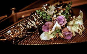 Picture flowers, the dark background, Lily, roses, bouquet, pipe, musical instrument, composition, wind instrument