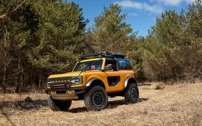 Picture Ford, Bronco, 2020, 2 Door Preproduction
