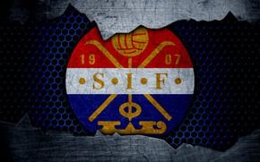 Picture wallpaper, football, sport, Stromsgodset, logo