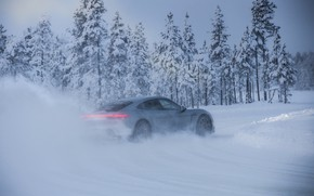 Picture road, snow, trees, grey, Porsche, 2020, Taycan, Taycan 4S