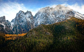 Picture forest, snow, mountains, tops