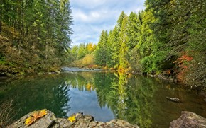 Picture autumn, forest, the sky, water, trees, reflection, river, stones, Washington, East Lewis River, Mouton Falls …