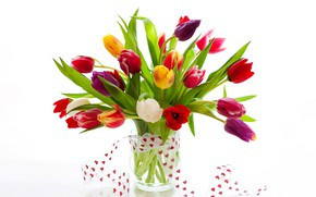 Picture flowers, bouquet, hearts, tulips, white background, vase, colorful, Valentine's day, ribbon