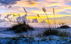 Picture sea, the sky, shore