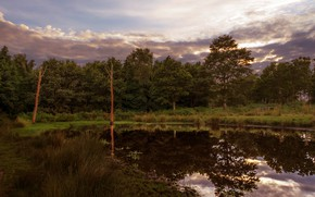 Picture autumn, forest, grass, clouds, reflection, shore, the evening, pond