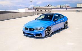 Picture BMW, BMW, BMW M4
