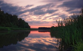 Picture the sky, trees, sunset, reflection, river, the evening, Agoranov Alex