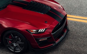 Picture Mustang, Ford, Shelby, GT500, the hood, bloody, 2019