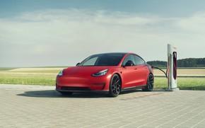 Picture Tesla, Novitec, Model 3, 2019