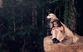 Picture forest, trees, stone, dog, girl, friends