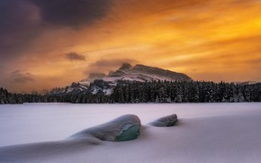 Picture winter, forest, the sky, snow, mountains, Timothy Poulton