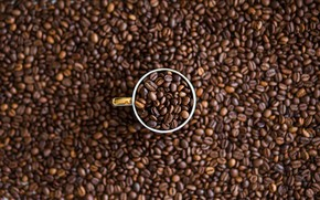 Picture Macro, Grain, Coffee, A bunch, Cup, A lot, Coffee beans, Coffee, Close-up, Grain, Grains, Roasted, …