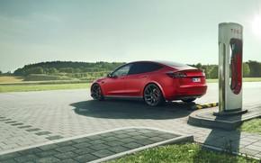 Picture rear view, Tesla, Novitec, Model 3, 2019